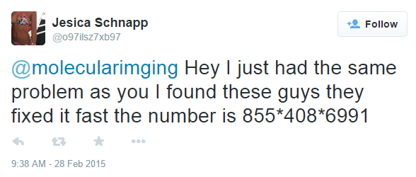 phone-scam-twitter-solicitation1